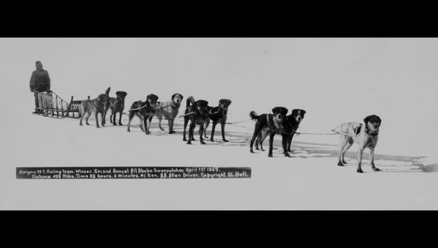 Scotty Allen won the second running of the All Alaska Sweepstakes, in 1909. The Sweepstakes race was the reason to organize the Nome Kennel Club.